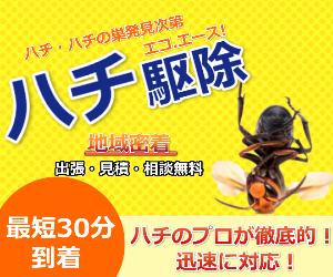 即日対応OK【エコ.エース ハチ駆除】の新潮流