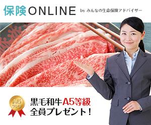 【保険ONLINE】自宅でプロに相談できる!無料のオンライン保険相談の決め手