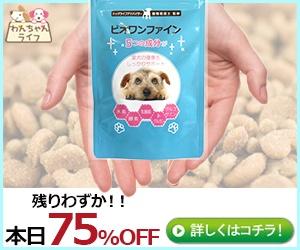 落ちた小型犬用スキンケアサプリ【ビオワンファイン】